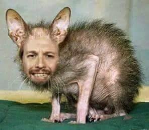 Resultado de imagen de pablo iglesias rata