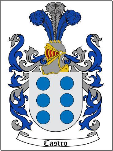 Image result for escudo fernandez de castro
