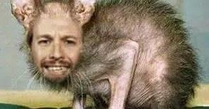 Podemos Chistes y Memes: La rata mutante de podemos
